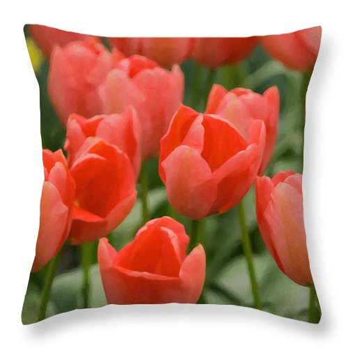 Beauty In Nature Throw Pillow featuring the photograph Tulips 33 by Ingrid Smith-Johnsen