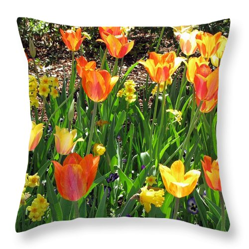 Tulip Throw Pillow featuring the photograph Tulips - Field With Love 41 by Pamela Critchlow