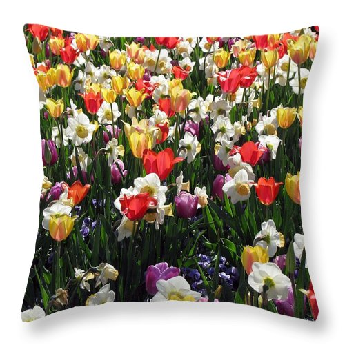 Tulip Throw Pillow featuring the photograph Tulips - Field With Love 57 by Pamela Critchlow