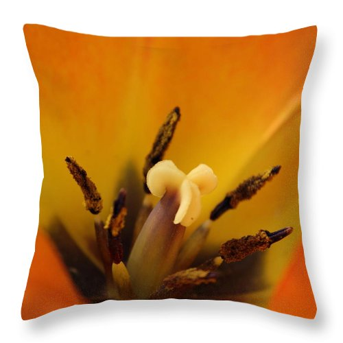 Tulip Throw Pillow featuring the photograph Tulip's Heart by Karen Beasley