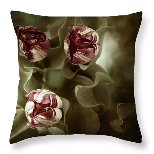 Digital Painting Throw Pillow featuring the photograph Tulips In The Mist by Beve Brown-Clark Photography