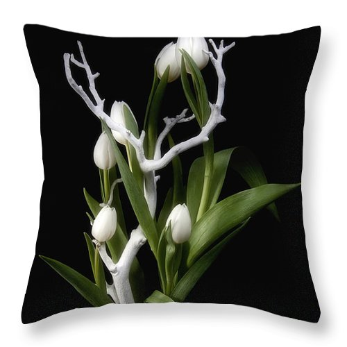 Arrangement Throw Pillow featuring the photograph Tulips In Tree Branch Still Life by Tom Mc Nemar