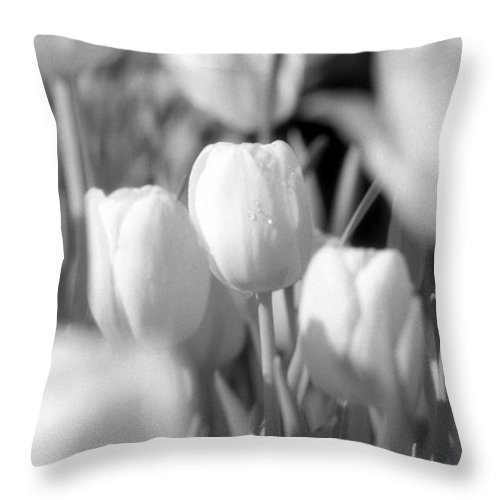 Tulip Throw Pillow featuring the photograph Tulips - Infrared 10 by Pamela Critchlow