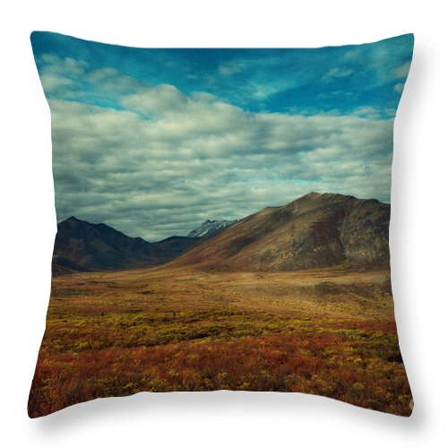 Transition Throw Pillow featuring the photograph Transition by Priska Wettstein
