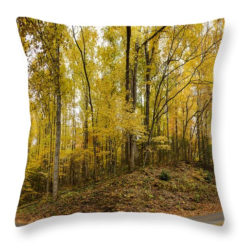 Autumn Throw Pillow featuring the photograph Turned The Brights On by Heather Applegate