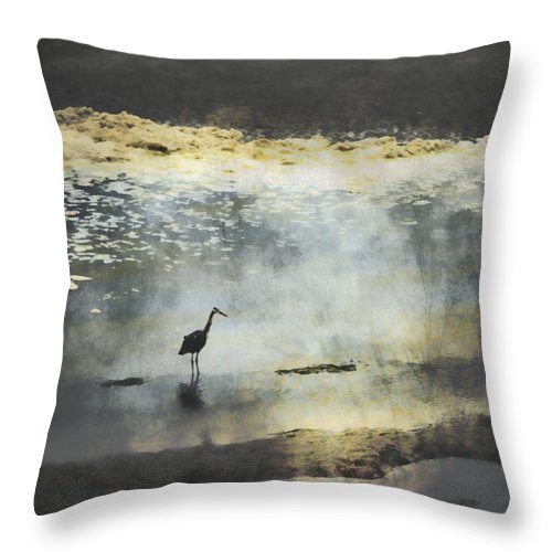 Great Blue Heron Throw Pillow featuring the photograph Turning Of The Tide by Carol Leigh