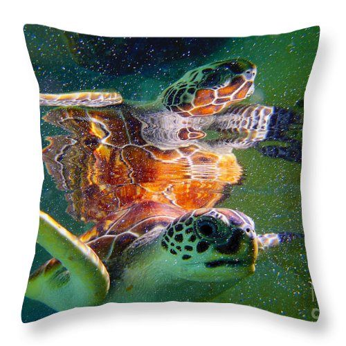 Turtle Throw Pillow featuring the photograph Turtle Reflection by Carey Chen