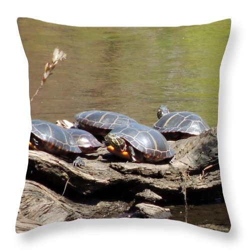 Nh Throw Pillow featuring the photograph Turtles by Mim White