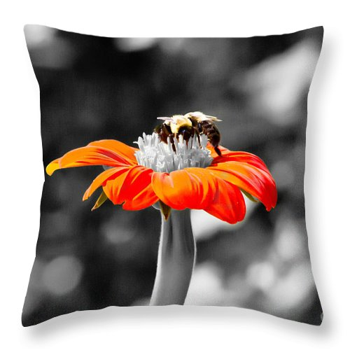 Nature Throw Pillow featuring the photograph Tweedle Bumble And Tweedle Bee by Ms Judi