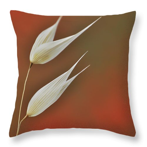 Floral Throw Pillow featuring the photograph Twin by Simona Ghidini