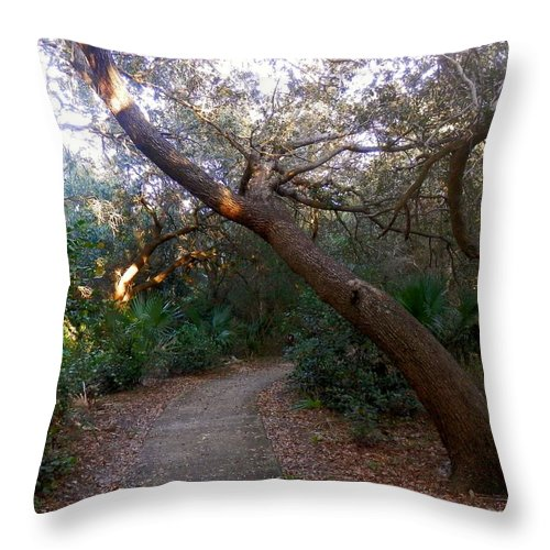 Twisted Oaks Throw Pillow featuring the photograph Twisted Oaks 2 by Joe Wyman
