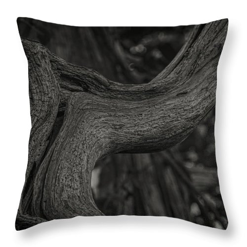 Tree Throw Pillow featuring the photograph Twisted Tree by David Stone