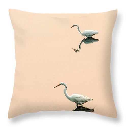 Egrets Throw Pillow featuring the photograph Two Egrets by Don Johnson