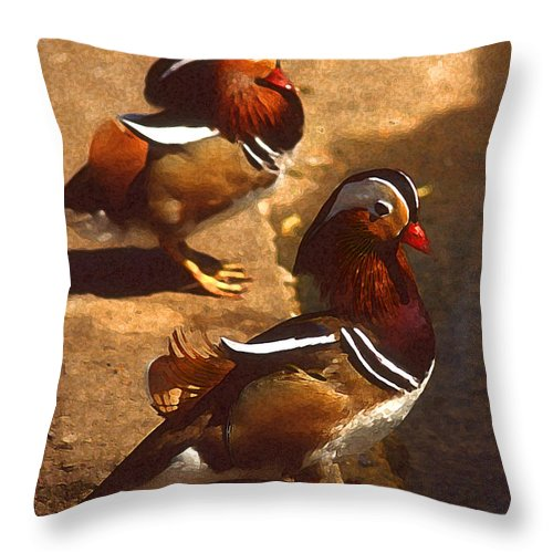 Birds Throw Pillow featuring the photograph Two Mandarins by Anthony Dalton