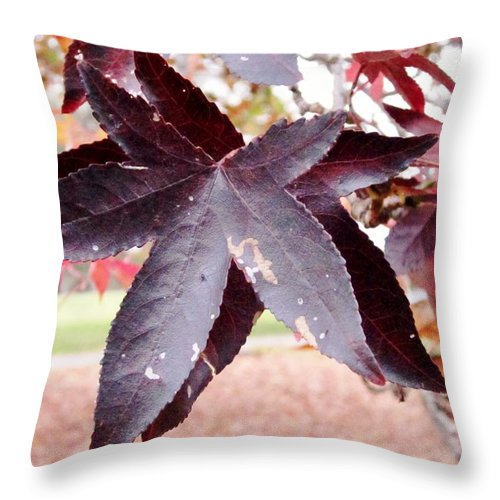 Leaves Throw Pillow featuring the photograph Two Of A Kind by Cynthia Clark