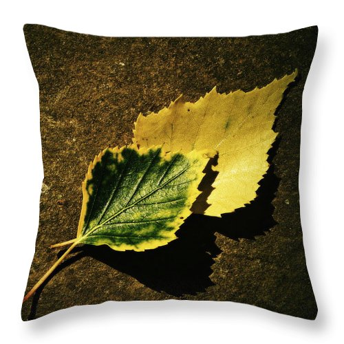 Garden Throw Pillow featuring the photograph Two Of Birch Leaves by Jozef Jankola