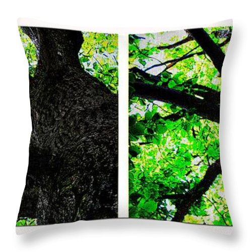 Two Old Trees Throw Pillow featuring the photograph Two Old Trees by Barbara Griffin
