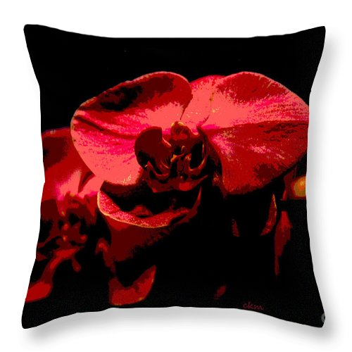 Orchids Throw Pillow featuring the photograph Two Orchids by Cindy Manero