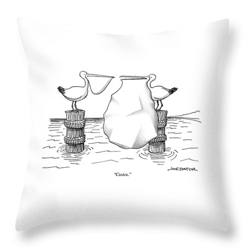 Costco. Throw Pillow featuring the drawing Two Pelicans Converse As The Other's Beak by Joe Dator
