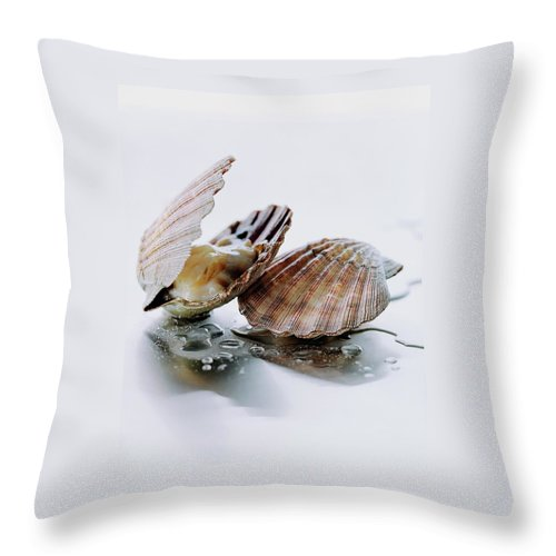 Cooking Throw Pillow featuring the photograph Two Scallops by Romulo Yanes