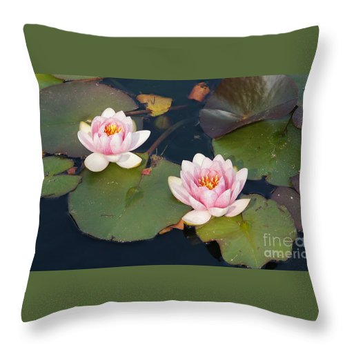 Water Lillies Throw Pillow featuring the photograph Two Water Lillies by Megan Cohen