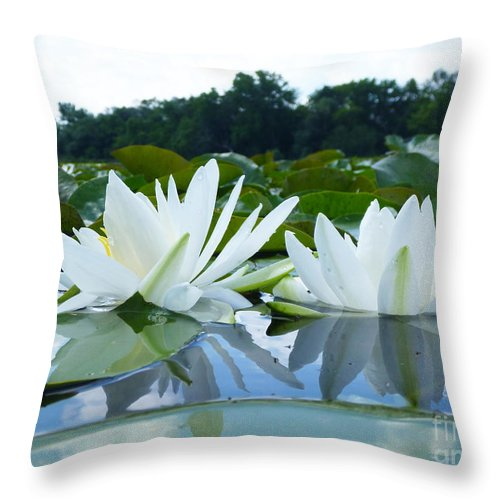 Lake Throw Pillow featuring the photograph Two White Waterlilies by Catherine Lottes