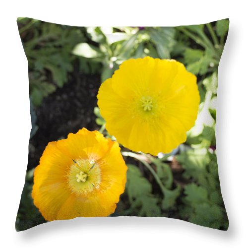 Solvang California Throw Pillow featuring the digital art Two Yellow Flowers by Barbara Snyder