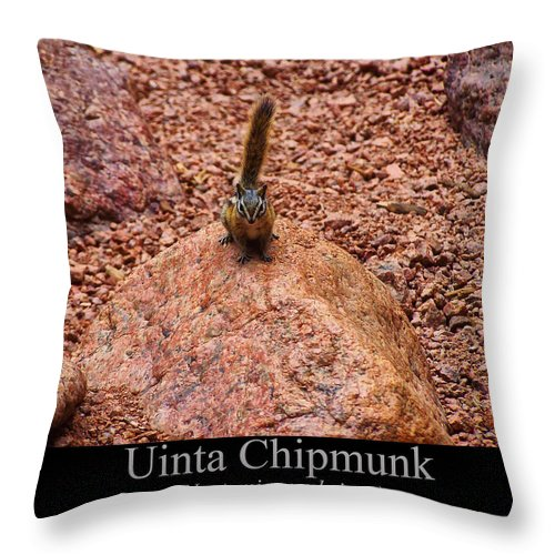 Class Room Posters Throw Pillow featuring the digital art Uinta Chipmunk by Chris Flees