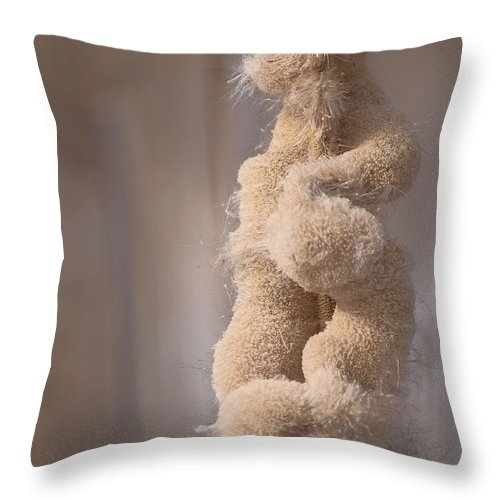 Throw Pillow featuring the photograph Unstuffed by Primal Traces