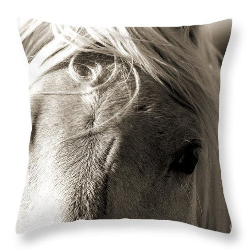Photography Throw Pillow featuring the photograph Unbrushed Mane by Jackie Farnsworth
