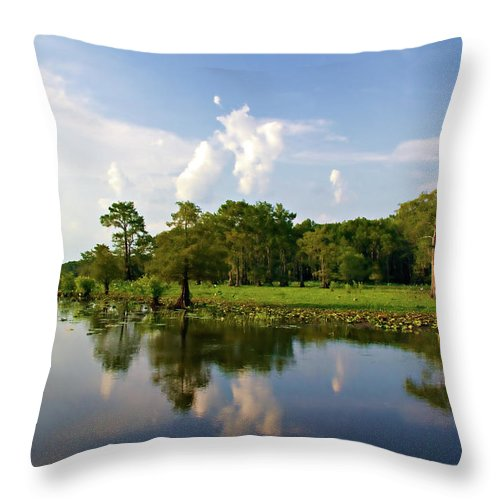 . Throw Pillow featuring the photograph Uncertain Reflection by Lana Trussell
