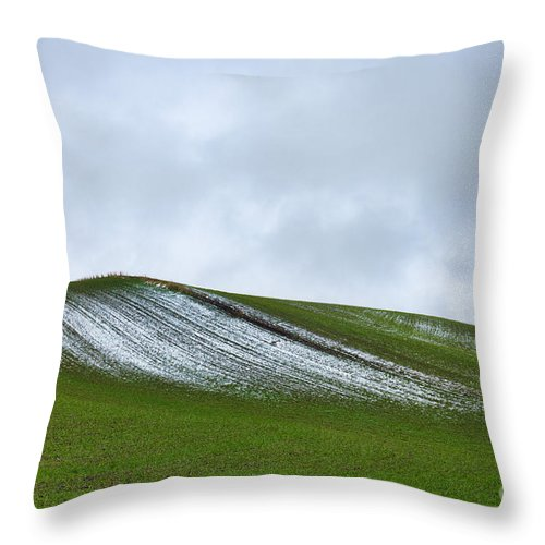 Landscape Throw Pillow featuring the photograph Under Menacing Skies by Don Hall