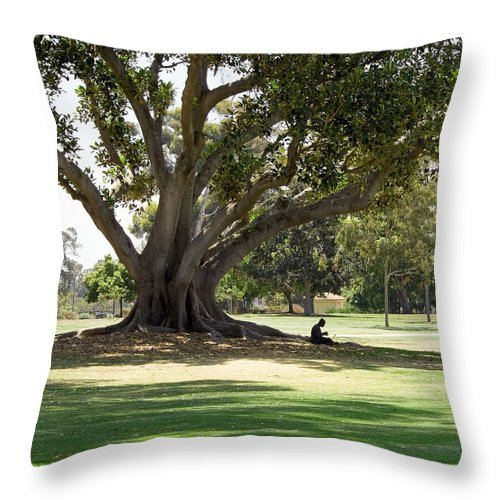 Gabriele Pomykaj Throw Pillow featuring the photograph Under The Big Old Tree by Gabriele Pomykaj