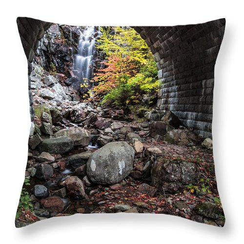 Vertical Throw Pillow featuring the photograph Under The Road by Jon Glaser