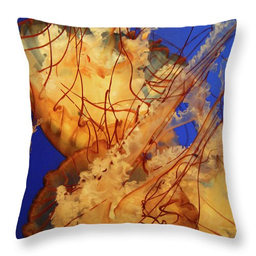 Jelly Fish Throw Pillow featuring the photograph Underwater Friends - Jelly Fish By Diana Sainz by Diana Raquel Sainz