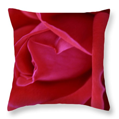 Rose Throw Pillow featuring the photograph Unfolding Glory by Mary Beglau Wykes