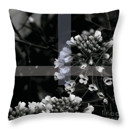 Jamie Lynn Gabrich Throw Pillow featuring the photograph Unity by Jamie Lynn