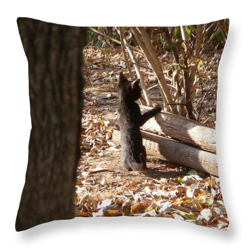 Black Cat Throw Pillow featuring the photograph I See You by Karen Capehart