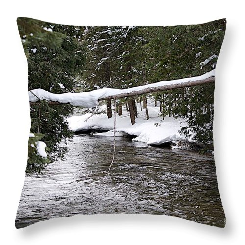 Graves Crossiing Throw Pillow featuring the photograph Up In Michigan by Joseph Yarbrough