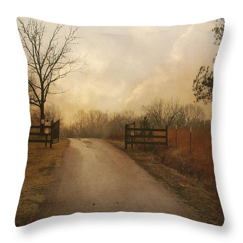 Country Throw Pillow featuring the photograph Uphill At Sunrise by Jai Johnson