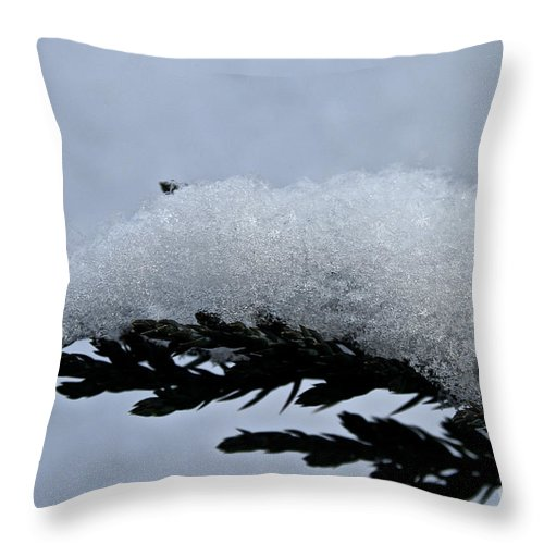 Outdoors Throw Pillow featuring the photograph Uplifted by Susan Herber