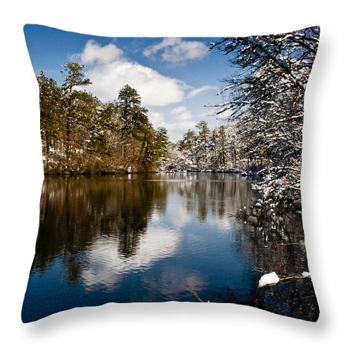 Winter Throw Pillow featuring the photograph Upper Pond 2 by Dennis Coates