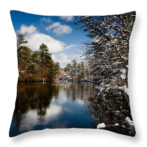 Winter Throw Pillow featuring the photograph Upper Pond 3 by Dennis Coates