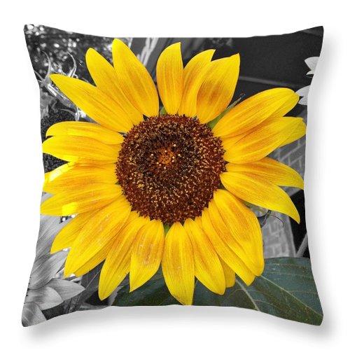 Sunflower Throw Pillow featuring the photograph Urban Sunflower by Jean Goodwin Brooks