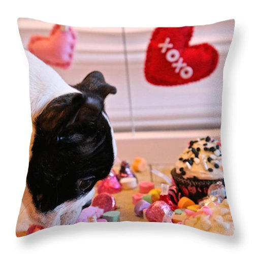 Animal Throw Pillow featuring the photograph Valentine Be Mine by Susan Herber