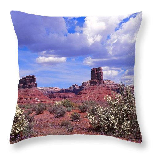 Southern Utah Throw Pillow featuring the photograph Valley Of The Gods by Cynthia Wallentine