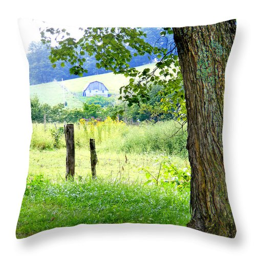 Duane Mccullough Throw Pillow featuring the photograph Valley View Along Flat Creek Rd by Duane McCullough