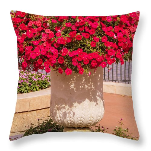 Petunia Throw Pillow featuring the photograph Vase Of Petunias by Zina Stromberg