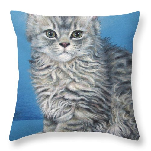 Cat Throw Pillow featuring the drawing Velvet Kitten by Nicole Zeug