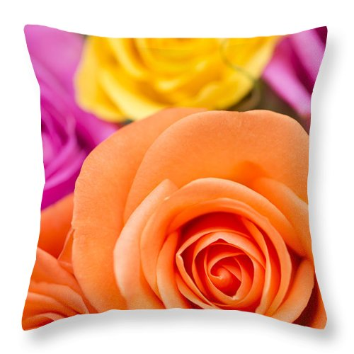Arranged Throw Pillow featuring the photograph Very Bold Bunch by Anne Gilbert